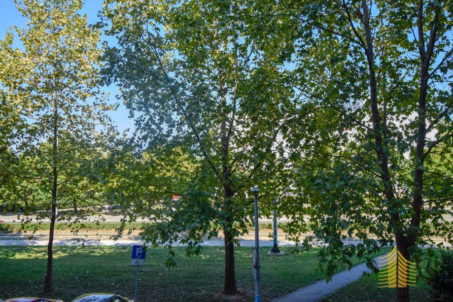 stan-zagreb-ferenscica-33.00-m2-slika-159632638